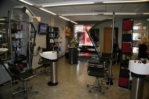 Salon Hair Design by Wilke